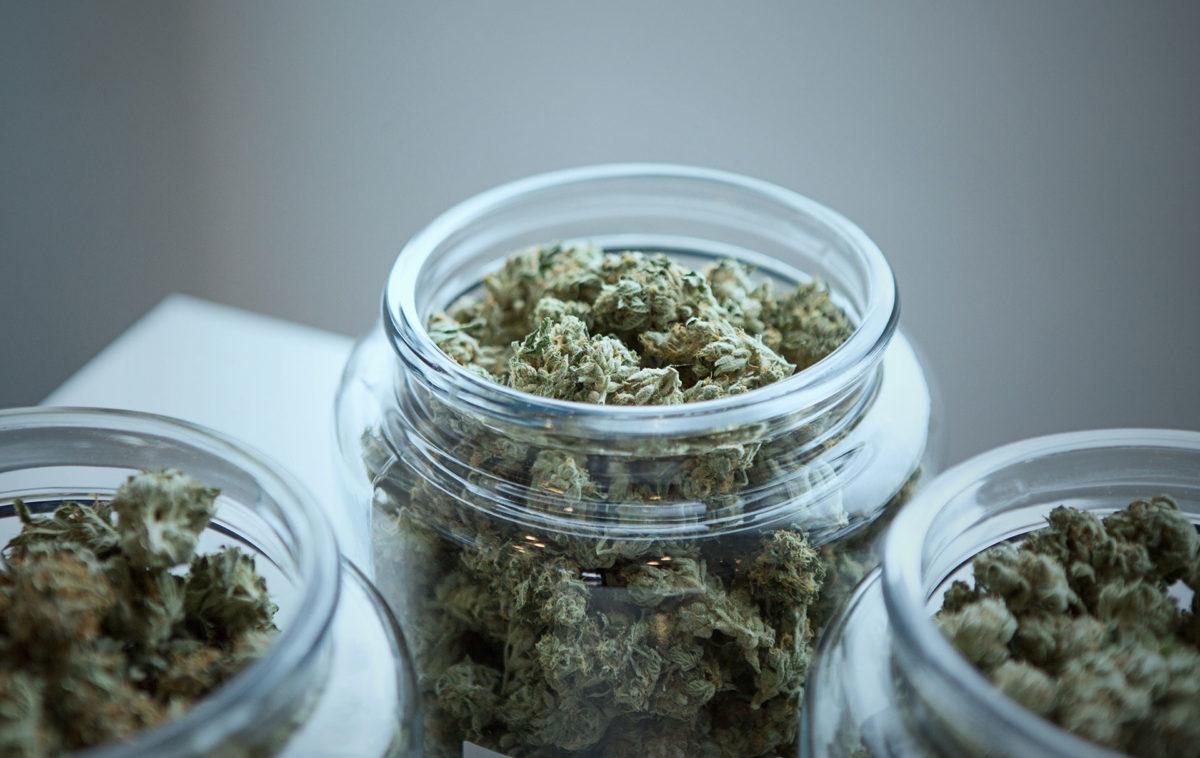 "Senate Introduces ""420 Bill"" to Federally Legalize Marijuana"